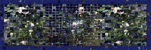 Digital collage of images of Kensington Market at night and my Kensington Market garden